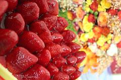 You are the one !! (Willey 3K) Tags: red party orange flower love rose cake strawberry heart eid celebration gift hdr عيد قلب كيك ورد هديه حب روز احتفال كيكه برتقالي احمر باقه فراوله حفله علبه فتيحي ftaihi