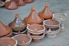Tajin (Hicham Charqane) Tags: nikon natura marocco fiori sole viaggi deserto d5000 charqane hichama