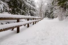 Snow Fence (Skunkwurcx) Tags: deleteme5 deleteme8 deleteme deleteme2 deleteme3 deleteme4 deleteme6 deleteme9 deleteme7 deleteme10