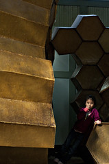 hive (grrlTravels) Tags: climbing z february honeycomb hive philadelphiazoo unseasonablywarm thetreehouse