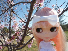 J.B. in front of the few cherry blossom