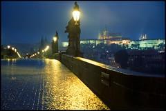 "073/366 THE WORLD Prague, Czech Republic ""Charles Bridge on a Rainy Night"" (TravelsWithDan) Tags: bridge oneaday rain prague praha czechrepublic charlesbridge theworld stonebridge imageaday yabbadabbado 366 worldtrekker"