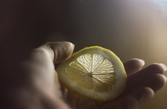 wanna lemon? (Lernavan) Tags: fruit lemon helios44   helios442   cuitrus