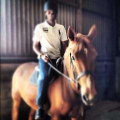 """Horse riding today with """"Lousy"""" (AD Royalty .. In UK) Tags: horses london swansea marina dubai day united uae abu dhabi maserati horseriding"""