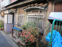 Tiled house (Sublight Monster) Tags: old history japan tokyo alley   sumida brothel offlimits   mukojima hatodori