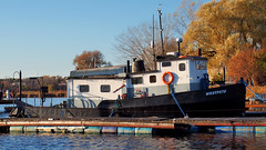 'Westpete' 48-foot 26-ton workboat/tug - Frenchman's Bay, Pickering, Ontario. (edk7) Tags: ontario canada steel tug lakeontario frenchmansbay pickering workboat pl5 2013 greatertorontoarea edk7 regionalmunicipalitydurham richardsonworkboatsinc westpete carvelflush length48ft nettonnage26 built1953erieaushipbuildingdrydockcoltderieauon 220hpdiesel speed10kt