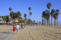 Santa Monica, California, USA (Thierry Hoppe) Tags: california usa beach bikepath sand santamonica palmtrees seafront