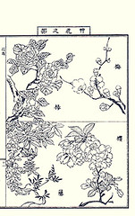 Top  camellia and plum; Bottom  Japanese wisteria and cherry (Japanese Flower and Bird Art) Tags: flower art japan cherry japanese book picture plum camellia fabaceae japonica wisteria nihonga prunus intaglio floribunda rosaceae theaceae yasujiro mume matama readercollection