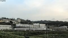 El raro de la familia... (yagoortiz) Tags: tren media corua goma via universidad ferrol trd distancia renfe udc adif elvia fronta 594010