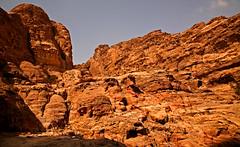 Path to the Monastery 24 (David OMalley) Tags: world city heritage rose rock stone site desert path petra siq carving unesco east jordan monastery arab middle carvings jordanian monumental jebel nabatean nabateans hewn maan almadhbah