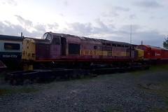37503 Leicester 15.05.16 (jonf45 - 2.5 million views-Thank you) Tags: br leicester rail trains class depot british 37 railways ews 37503