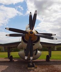 2016_05_0350 (petermit2) Tags: museum fairey newark nottinghamshire airmuseum gannet newarkairmuseum faireygannet