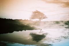 repeat to fade (fotobes) Tags: reflection tree water field silhouette reflections landscape sussex lca pond dusk doubleexposure hill multipleexposure analogue dewpond ditchlingbeacon lomochrometurquoise lomochrometurquoisexr100400