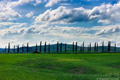 Paesaggio Toscano (Eleonora Cacciari) Tags: sky italy tree verde green nature alberi clouds landscape reflex italia nuvole blu hill cielo tuscany toscana paesaggio italianlandscape paesaggiotoscano canonefs18135mmf3556isstm eos1200d eleonoracacciari ecacciari shotbyecacciari