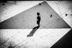 Triangles (.craig) Tags: street city travel shadow people urban blackandwhite bw birds contrast walking person pavement walk candid pigeons citylife explore