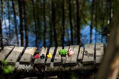 (Choo_Choo_train) Tags: family colors animals fun toys pig duck fuji fb xt1 tumblr