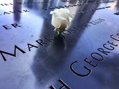 Rose (Moneontour) Tags: newyork freedomtower rosw oneworldtradecenter