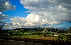 #148_IGP5674_5_6_Yarra_Valley_Idyll (imageo) Tags: autumn sunshine clouds vineyards hdr