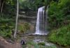 Cascade du Dard (Karl Le Gros) Tags: green nature forest river switzerland waterfall explore serenity cascade stillness protected 2016 riverscape croy saintloup explored cantondevaud nozon xaviervonerlach lebeaupaysdevaud lestroisvallons