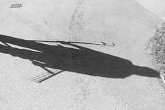 L1021102 (Sigfrid Lundberg) Tags: leica shadow lund skne sweden pavement wife aposummicronm vstanvg aposummicronm50mmasph 50mmf20asph