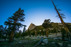 DSC08874.jpg (aaronsever) Tags: yosemite tuolumne meadows climbing cathedral mountain