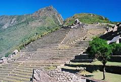 Machu Picchu 1 - 19