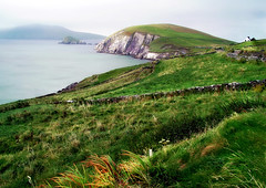 To The Ends of Ireland (h_roach) Tags: travel ireland green water grass horizontal stone farmhouse europe dingle fences cliffs lonely peninsula gettyimage