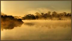 Light fog (WanaM3) Tags: reflection nature water fog sunrise dawn golden texas scenic bayou pasadena canoeing paddling bayareapark armandbayou flickrdiamond