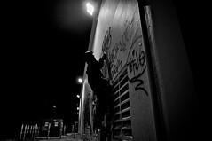 (Illusions_of_grandeur) Tags: graffiti marin freeway baybridge caltrans boes fuckcaltrans thescottishmafia