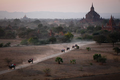 Arrivals at Pyathatgyi (Lil [Kristen Elsby]) Tags: travel horse history dusty tourism landscape temple topf50 asia dusk burma topv1111 bama buddhism tourists unescoworldheritagesite temples getty myanmar cart gettyimages bagan horseandcart travelphotography canon70200f28l canon7020028l htilominlo myanma oldbagan pyathatgyi canon5dmarkii gettyimagesonflickr myanmar2012