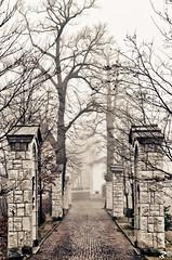 Calmi, niente paura [EXPLORE] (Riccardo Brig Casarico) Tags: fog wow nebbia atmosfera brig riki camminare atmosphre brigrc
