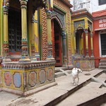 "Dog with Ornate Building <a style=""margin-left:10px; font-size:0.8em;"" href=""http://www.flickr.com/photos/14315427@N00/6879274193/"" target=""_blank"">@flickr</a>"