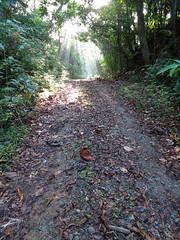 Pipeline Road @ Rio Frijoles