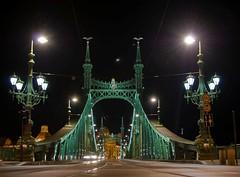 Ungheria, Budapest, ponte della Libertà (forastico) Tags: budapest ponte libertà ungheria d60 libertybridge pontedellalibertà forastico nikonflickraward luckyorgood