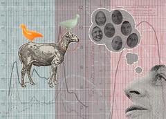 Va te faire sonder ! (olga lupi) Tags: france animal collage illustration blog sheep pigeon diagram shit politicians survey 2012 olgastringraphy lesterbrome olupi olgalupi