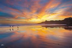 A simple sunset (Yan L Photography) Tags: statepark sunset seascape birds rock pacific bridges wave naturalbridge