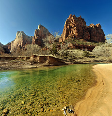 the three patriarchs and river in zion 3 resized (houstonryan) Tags: park art river print landscape photography three utah photo photographer desert angle ryan side low houston national photograph bloom zion february 2012 patriarchs phtoographer houstonryan