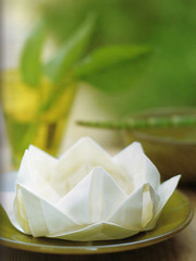 Origami création - Didier Boursin - Nenuphar