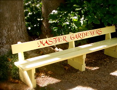 """""""ATTENTION GARDENERS!"""" (MaryLou1298) Tags: bench gardening planting springtime"""
