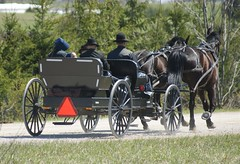 2012-04-22_Family Carriage (Mark Burr) Tags: holyrood mennonite horseandbuggy langside brucecounty oldordermennonite greyoxavenue