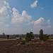 Lüneburger Heide 120414 031.jpg