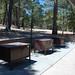 Whitetail Campground #9