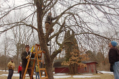 "Apple Pruning Party <a style=""margin-left:10px; font-size:0.8em;"" href=""http://www.flickr.com/photos/91915217@N00/13528322913/"" target=""_blank"">@flickr</a>"