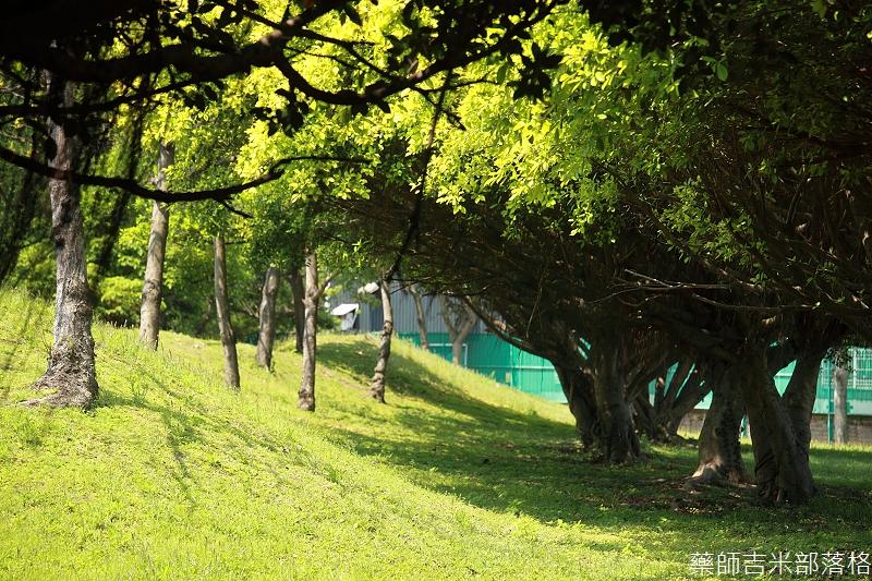 Park_272