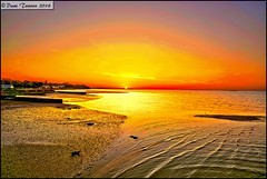 Sunset, from Ryde Pier (dark-dawud) Tags: sea england seascape beach reflections coast sand scenery view shoreline sunsets coastal isleofwight ryde