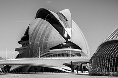 the future is now No. 2 (lunaryuna) Tags: bw valencia architecture blackwhite spain monochromatic futurism lunaryuna cityofartsandsciences thefutureisnow scifibuffsunleashed scifiesque ciudaddeartesyciencias urbanconstructs