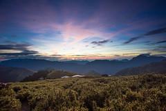 -3 (billlushana1) Tags: travel cloud mountain flower tree sony taiwan hike peaks  taroko tw  tarokonationalpark hehuanshan    mountain 100peaksoftaiwan taiwantop100peaks sonya7r