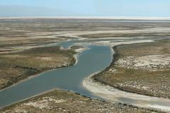 Lake Eyre flight (Melissa Macgill) Tags: lake creek river william outback sa southaustralia warburton eyre