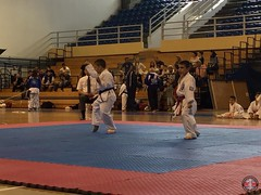 stefanou_15_5_2016_knockdown_260