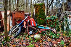 rest (riccardo nassisi) Tags: auto abandoned car pc rust ruins fiat rusty scrapyard wreck scrap piacenza wrecked ruggine relitto rottame travo epave abbandonata